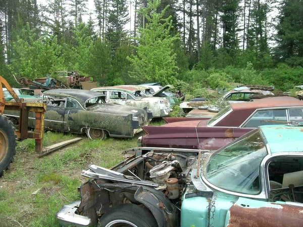 Auto salvage yards denver metro area